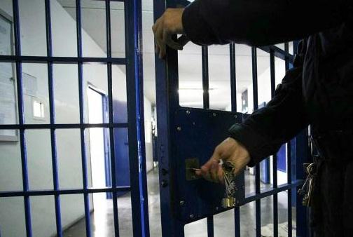 animali in visita al carcere