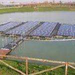 Centrali elettriche galleggianti: sperimentazioni e aspettative