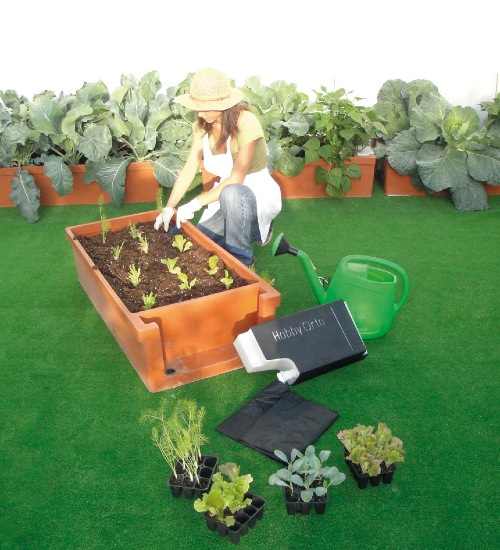 Un orto vero,sul balcone con i prodotti di HobbyOrto | Giardinauta ...