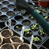 Prepariamoci per le semine di Febbraio