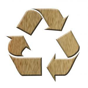 Fai Da Te – Vasi biodegradabili a costo zero ?